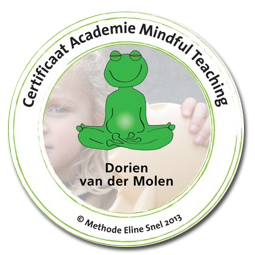 Certificaat Training Mindful Teaching